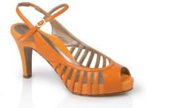 Dana Davis heel