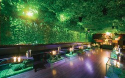 Greenhouse nightclub in New York