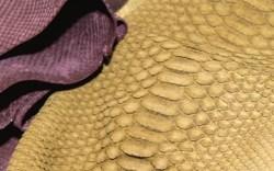 Dolmen&#8217s super-soft crocs in mustard pink purple and green