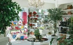 Kemps Shoe Salon & Boutique