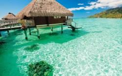 Snookis Dream Vacation Bora Bora