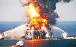 The BP oil disaster in the Gulf of Mexico