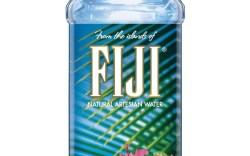 Lisa Pliner Donald Pliner Fiji water