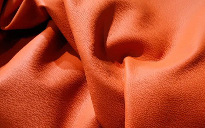 Textured bull hide by DUPIRE TANNERIES