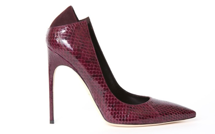 Brian Atwood&#8217s ruby python pump