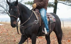 Shane Rickly will promote Rockys western footwear while bull riding and during public appearances