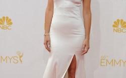 Emmys 2014 Kristen Wiig Vera Wang