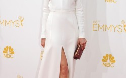 Emmy Awards 2014 Michelle Monaghan