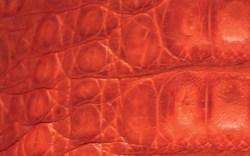 Footwear FN Footwear News Pan American Leather