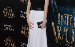 """""""Into the Woods"""" Premiere"""