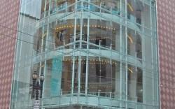 Neiman Marcus earnings