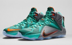 Nike Lebron '12 shoes