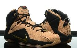 LeBron James 2015 Signature Shoes