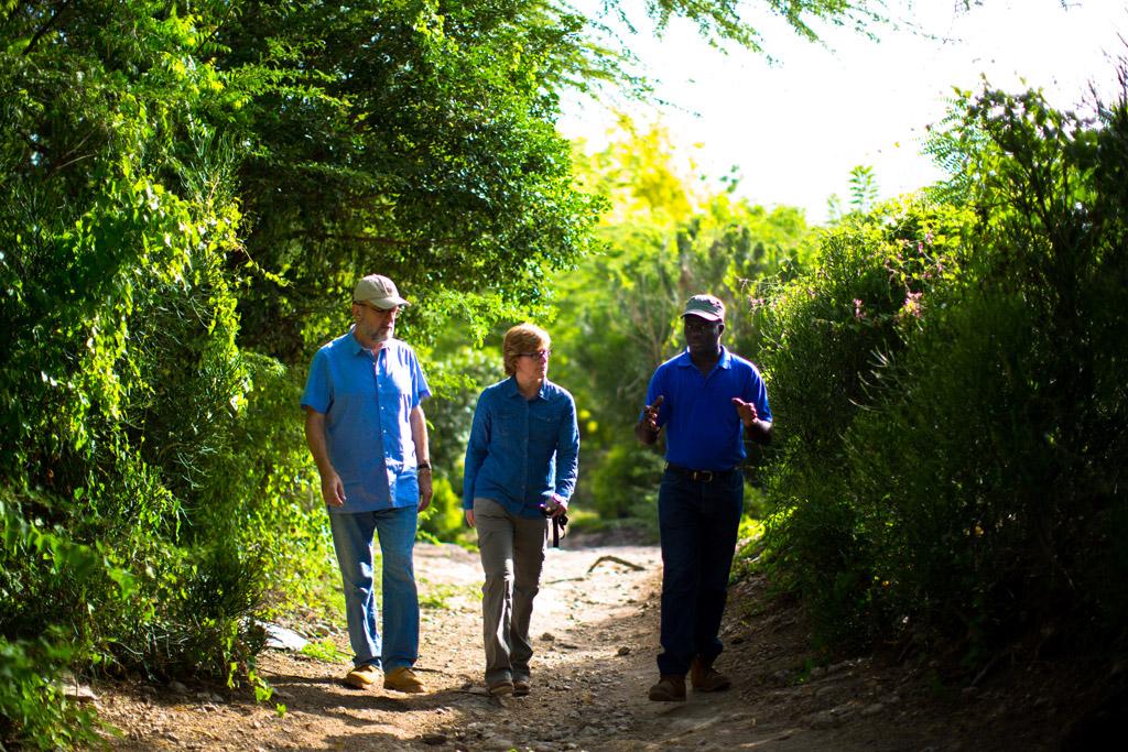 Timberland; Haiti