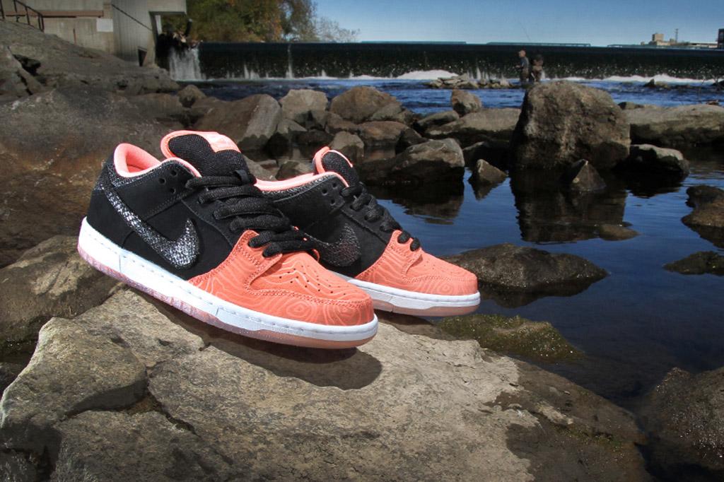 Premier x Nike SB Fish Ladder Dunk Low