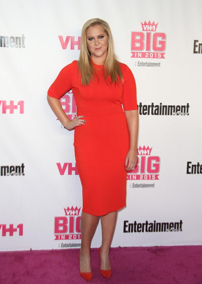 Amy Schumer VH1 Big In Entertaiment