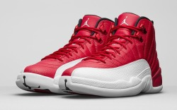 Air Jordan 12 Retro Alternate