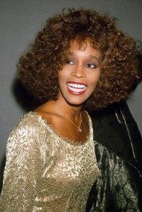 Whitney Houston Auction