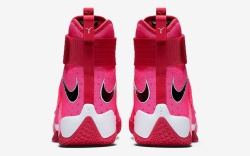 Nike Zoom LeBron Soldier 10 for