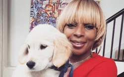 brian atwood dog mary j blige