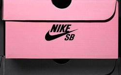 pink Nike SB sneaker box