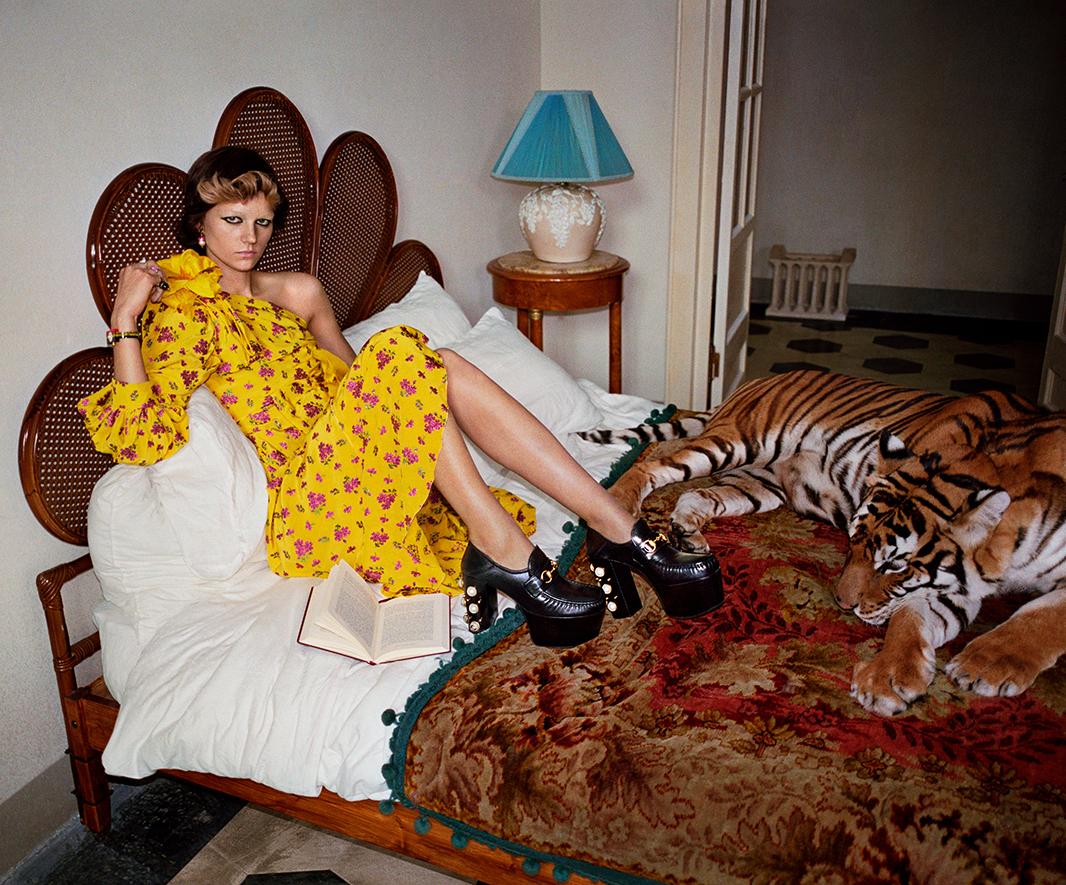 Gucci spring ad campaign.