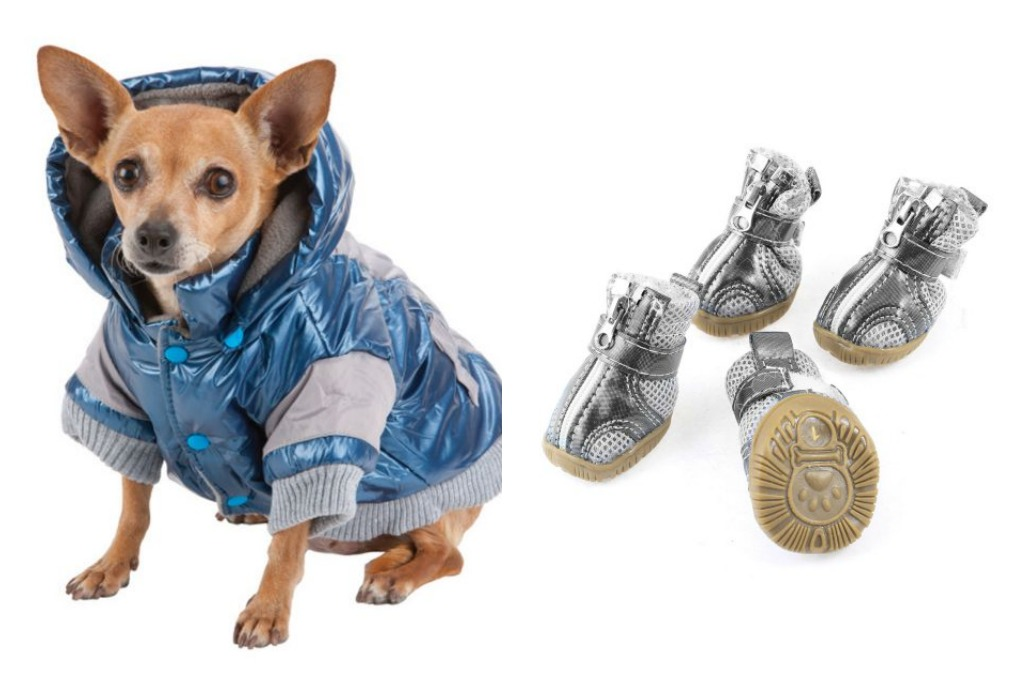 7 Matching Dog Shoe/Dog Outfit Looks Every Pup Needs