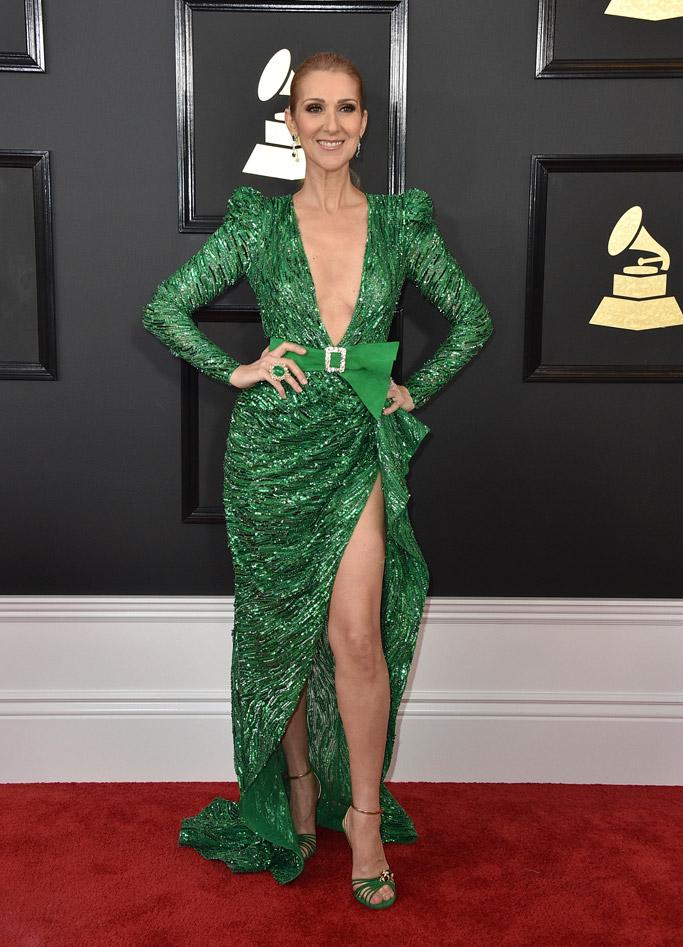 Celine Dion 2017 Grammys Red Carpet