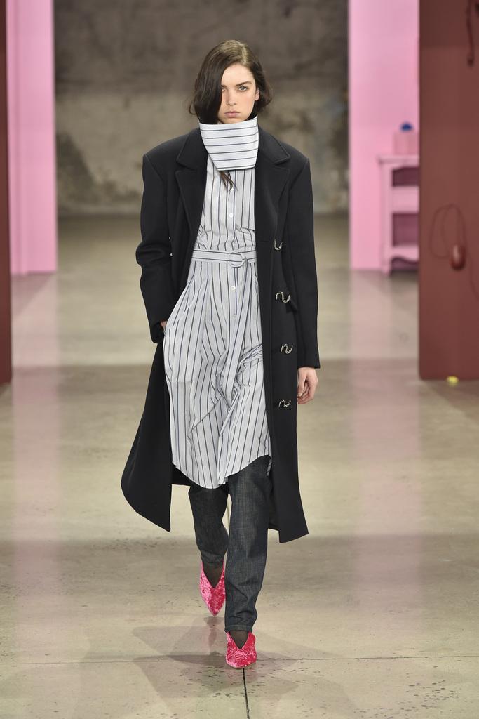 Tibi Ready to Wear Fall 2017