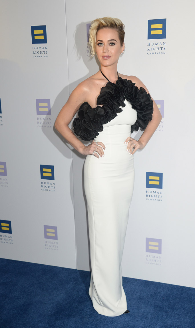 2017 human rights campaign gala hrc katy perry