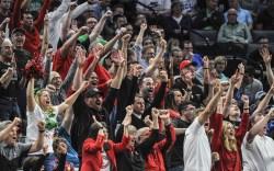 Cincinnati fans