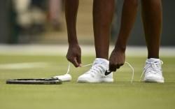 Venus William Sneakers