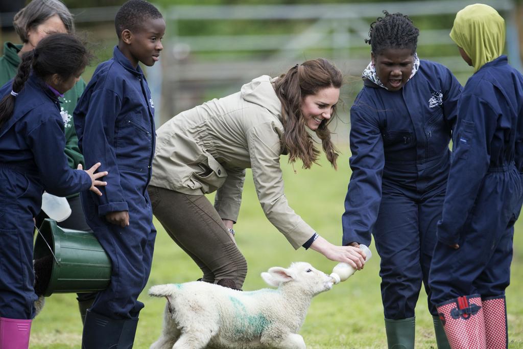 Kate Middleton Children's Charity Farm