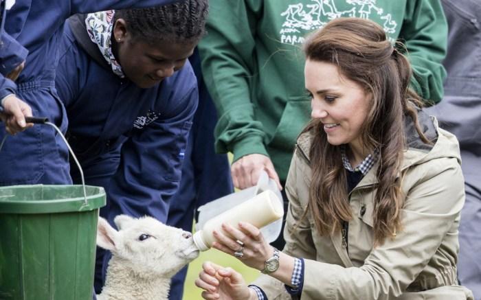 Kate Middleton Children's Farm Penelope Chilvers