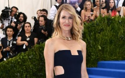 Laura Dern The Costume Institute Benefit