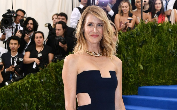Laura Dern The Costume Institute Benefit celebrating the opening of Rei Kawakubo/Comme des Garcons: Art of the In-Between, Arrivals, The Metropolitan Museum of Art, New York, USA - 01 May 2017