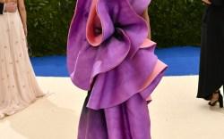 Riskiest Met Gala Fashion