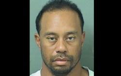 Tiger Woods, arrested, mugshot, photo