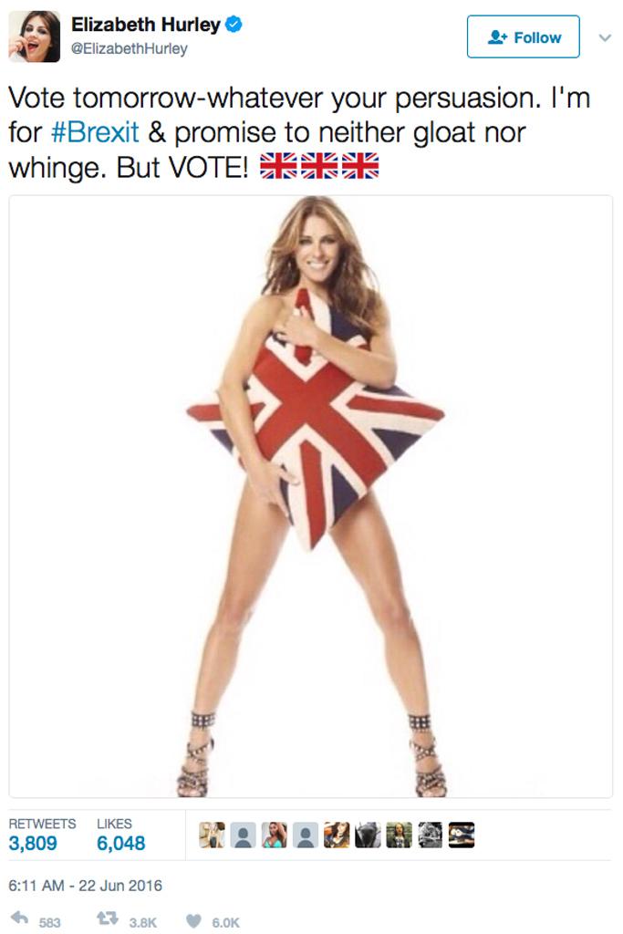 Elizabeth Hurley twitter brexit