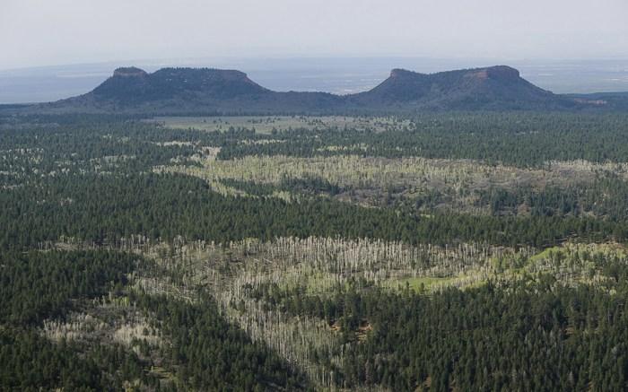 Utah Bears Ears National Monument