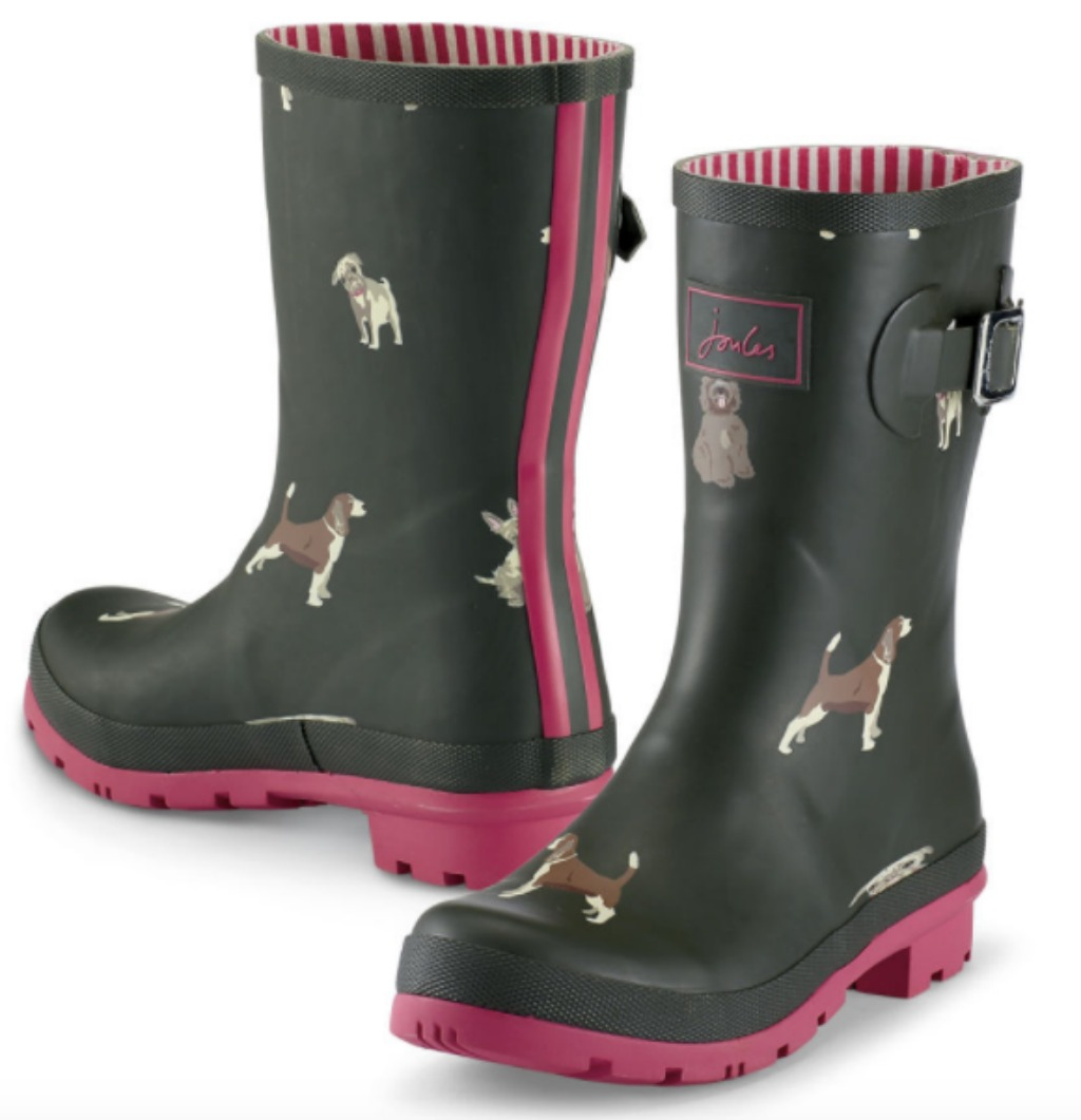 in the company of dogs rain boots