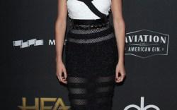 Celeb Style: 2017 Hollywood Film Awards