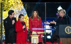 Melania Trump's Christmas Tree Lighting Dress & Heels