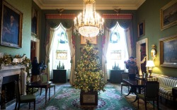 2017 White House Holiday Decorations