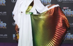 Celebrities at the 'Black Panther' Premiere in LA
