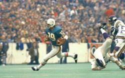 super bowl style, Larry Csonka, Dolphins