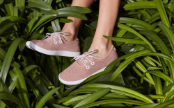 Allbirds Skipper
