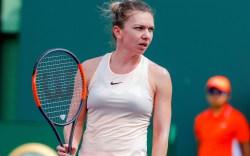 Simona Halep, tennis, miami