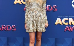 Best Dressed at the ACM Awards