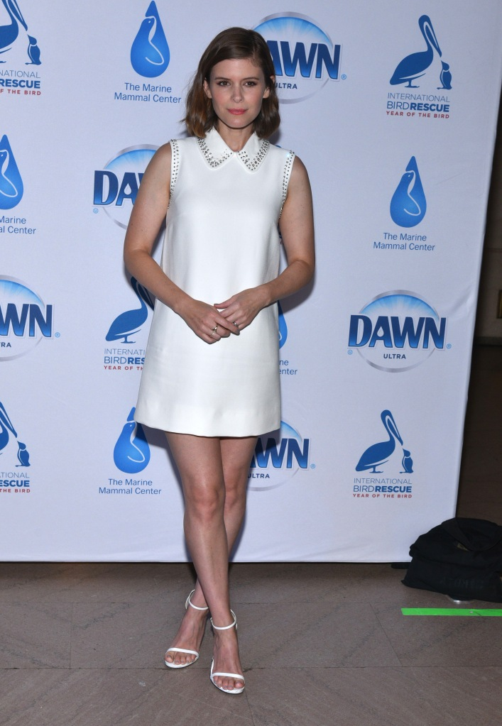 Kate Mara attends the celebration of Dawn dish soap's 40th anniversary for 'Dawn' 40th anniversary for wildlife rescue initiatives in New York.